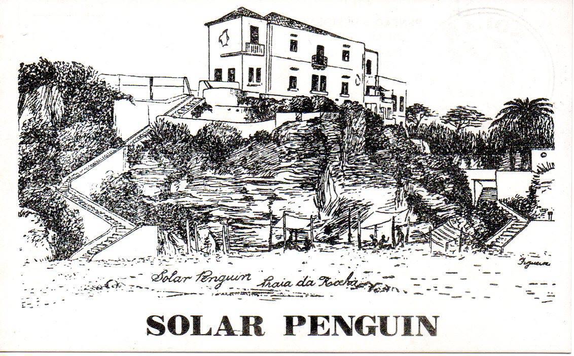 Solar Pinguim
